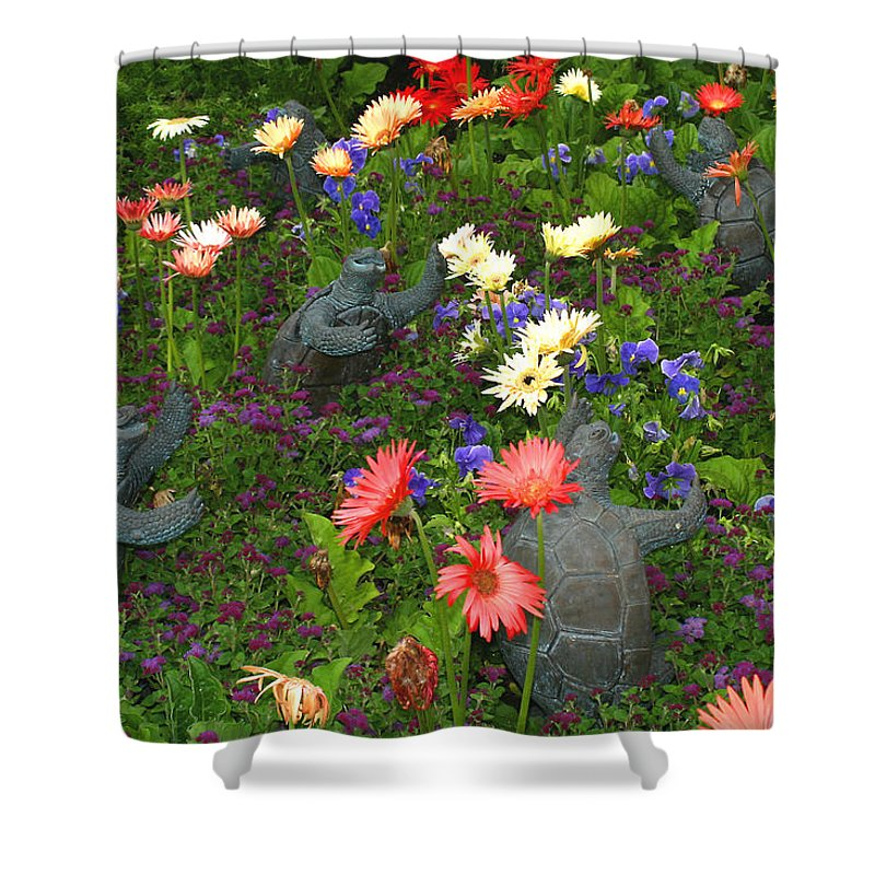 Turtles Statute Flowers Plants Joyous Daisy Gerber Daisy Green Photography Photograph Art Digital Shower Curtain featuring the photograph Dancing Turtles by Shari Jardina