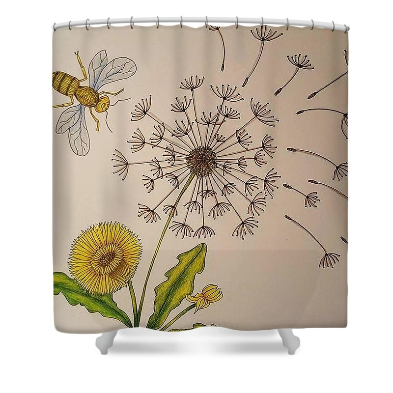 Dandelion Shower Curtain Featuring The Drawing And A Bee By Barbara Gustaveson