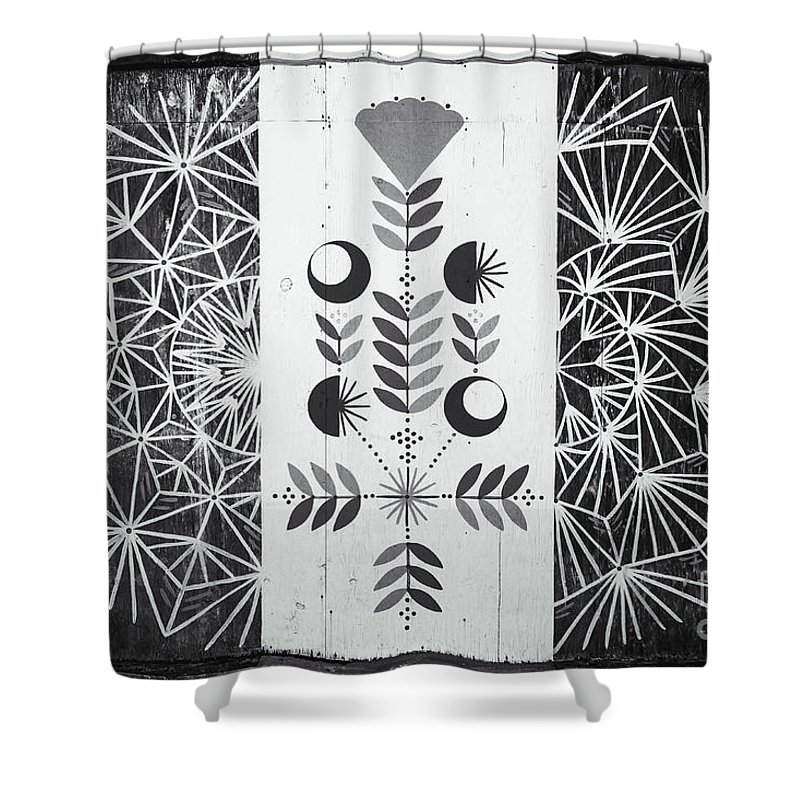 Asbury Park Shower Curtain featuring the photograph Dandelion Puff by Colleen Kammerer