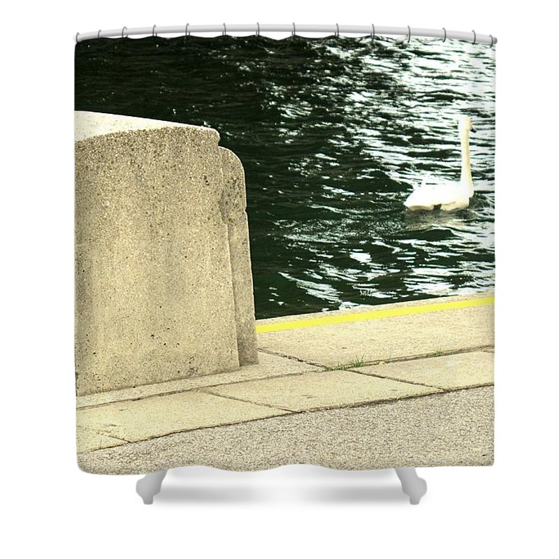 Swan Shower Curtain featuring the photograph Danube River Swan by Ian MacDonald