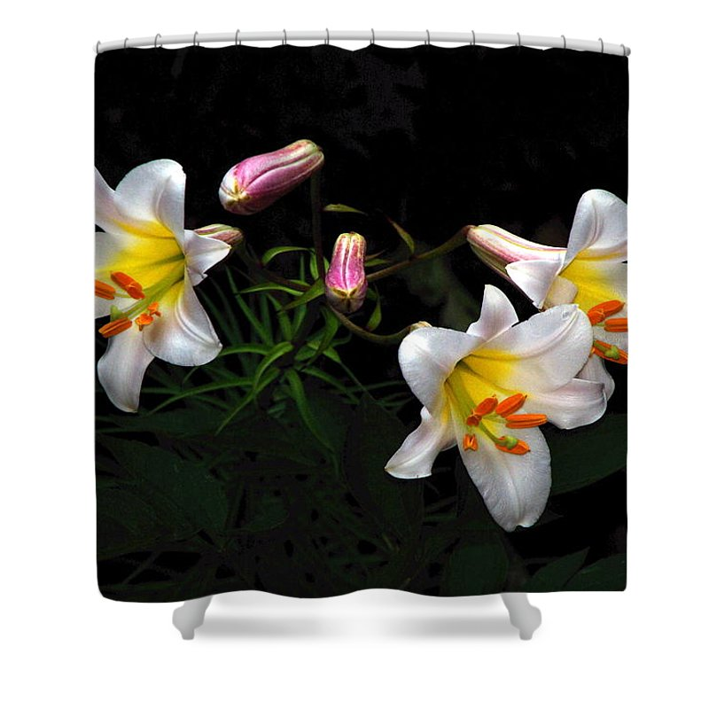 Lilies Shower Curtain featuring the photograph Dark Day Bright Lilies by Byron Varvarigos