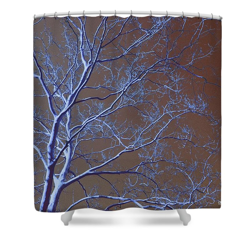 Tree Shower Curtain featuring the photograph Dark Woods by Betty Northcutt