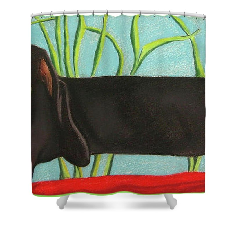 Dog Painting Shower Curtain featuring the pastel Dash Hound by Michelle Hayden-Marsan