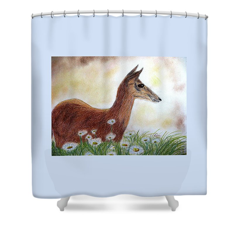 White-tailed Deer Shower Curtains