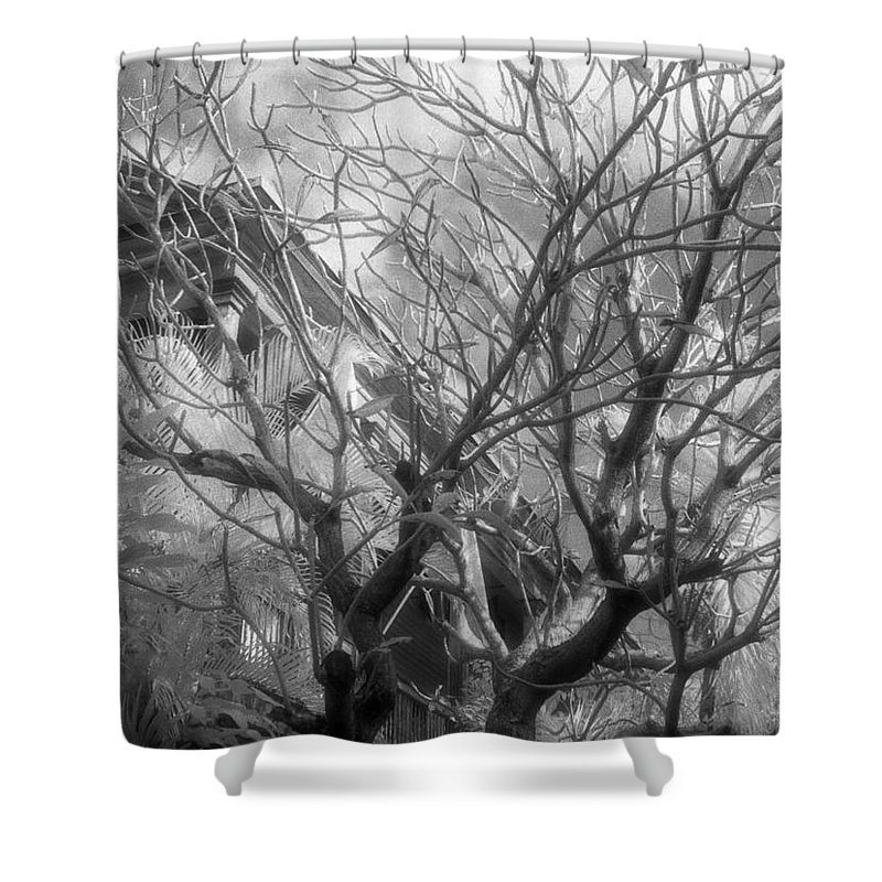 Infrared Photography Shower Curtain featuring the photograph Day Dream by Richard Rizzo