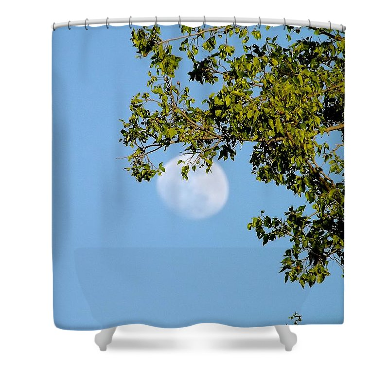 Nature Shower Curtain featuring the photograph Day Moon #2 by Annie's Images