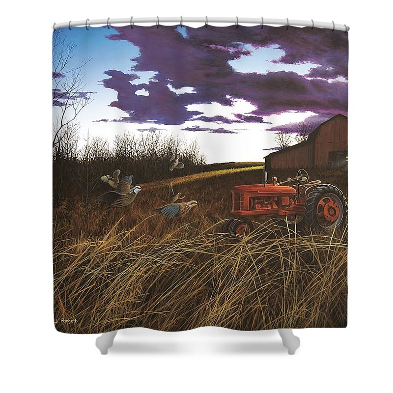 Farmall Shower Curtain featuring the painting Daybreak Flush by Anthony J Padgett