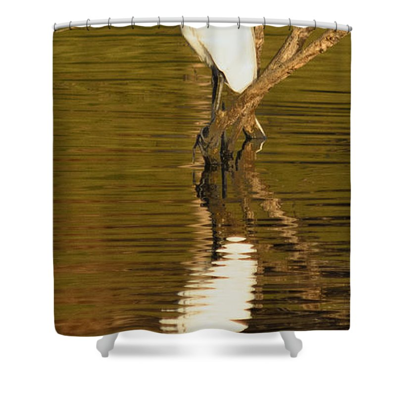 Egret Shower Curtain featuring the photograph Days End With One Egret by Doug Holck