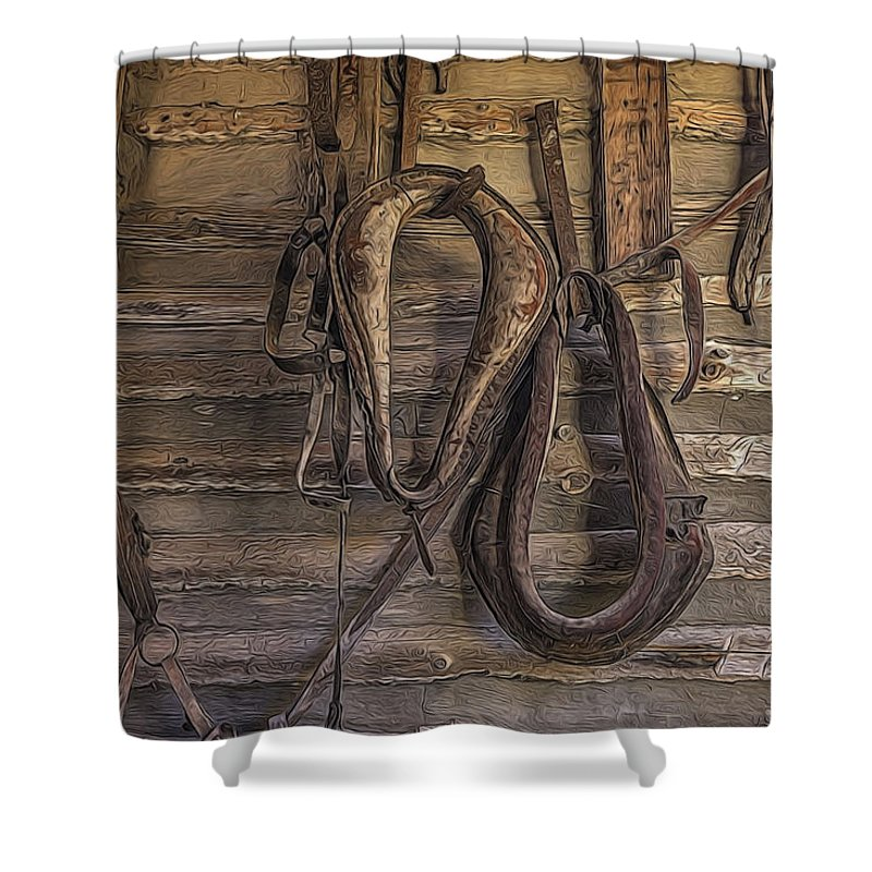 Horse Shower Curtain featuring the painting Days Gone by Joe Sparks