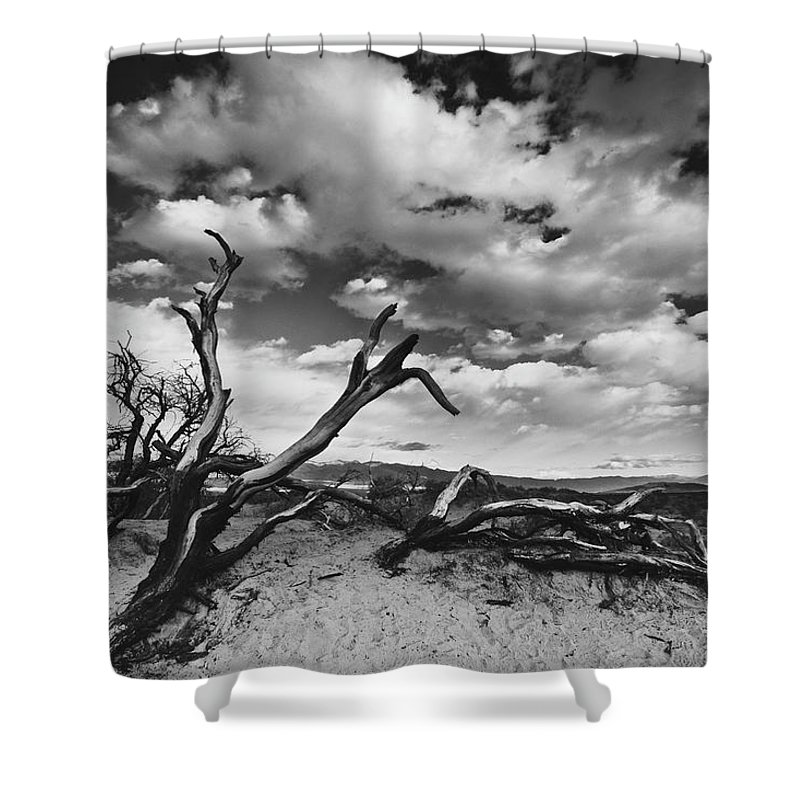 Landscape Shower Curtain featuring the photograph Dead Trees at Mesquite Dunes by Nathan Spotts