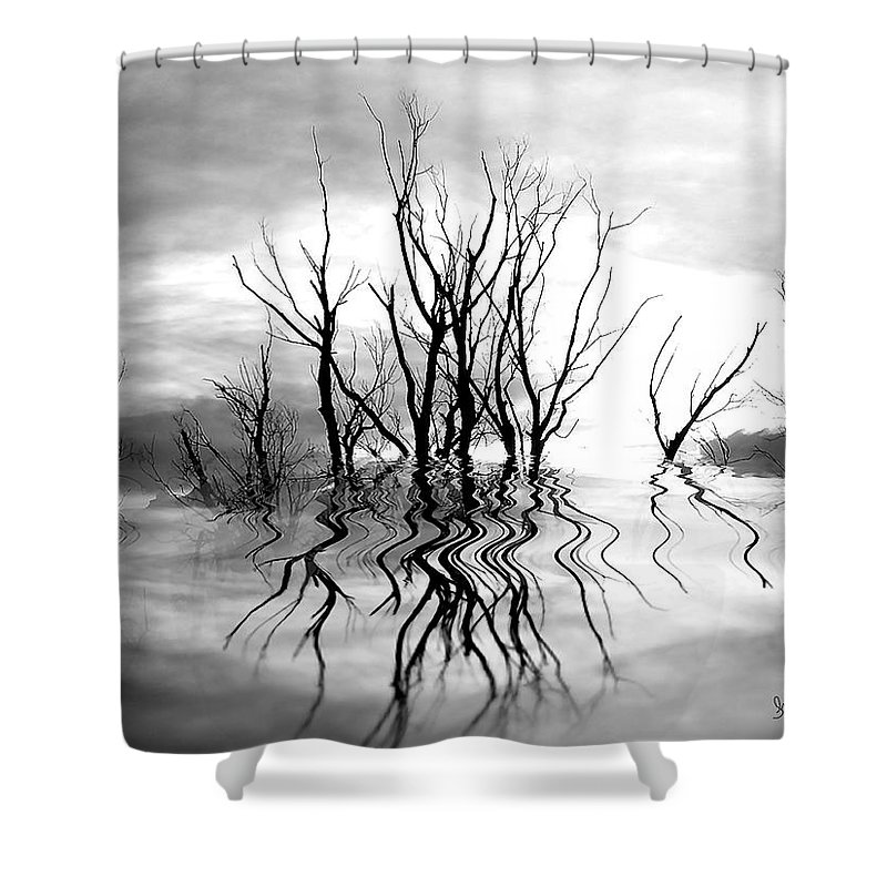 Photography Shower Curtain featuring the photograph Dead Trees Bw by Susan Kinney