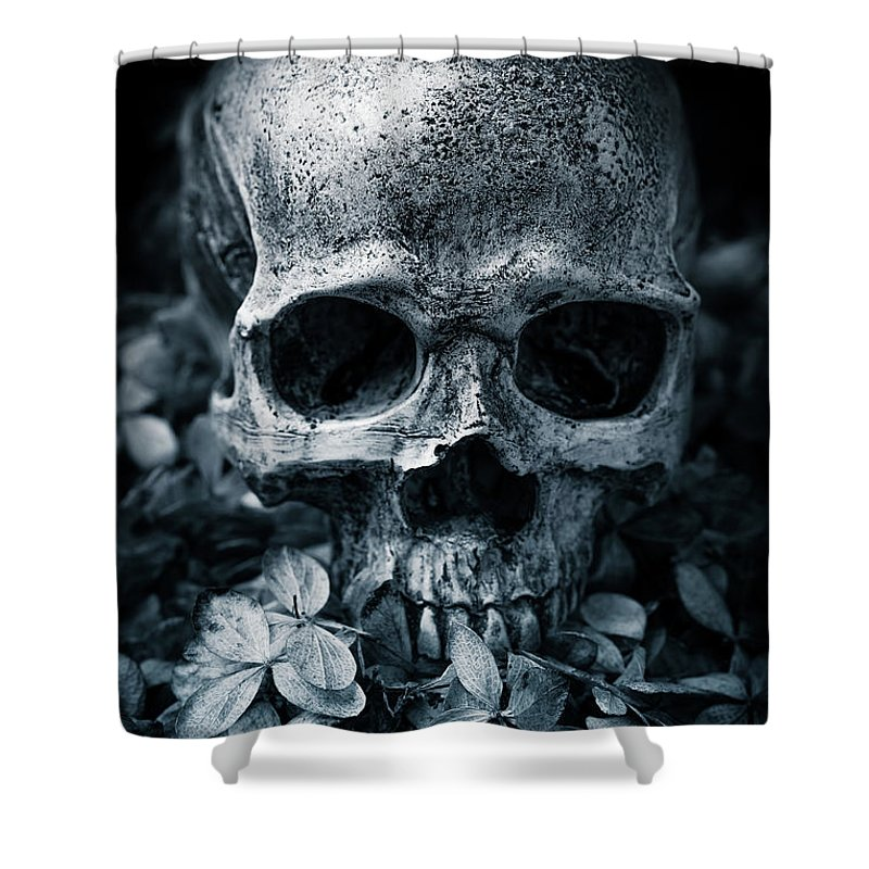 Morbid Shower Curtain featuring the photograph Death Comes To Us All by Edward Fielding