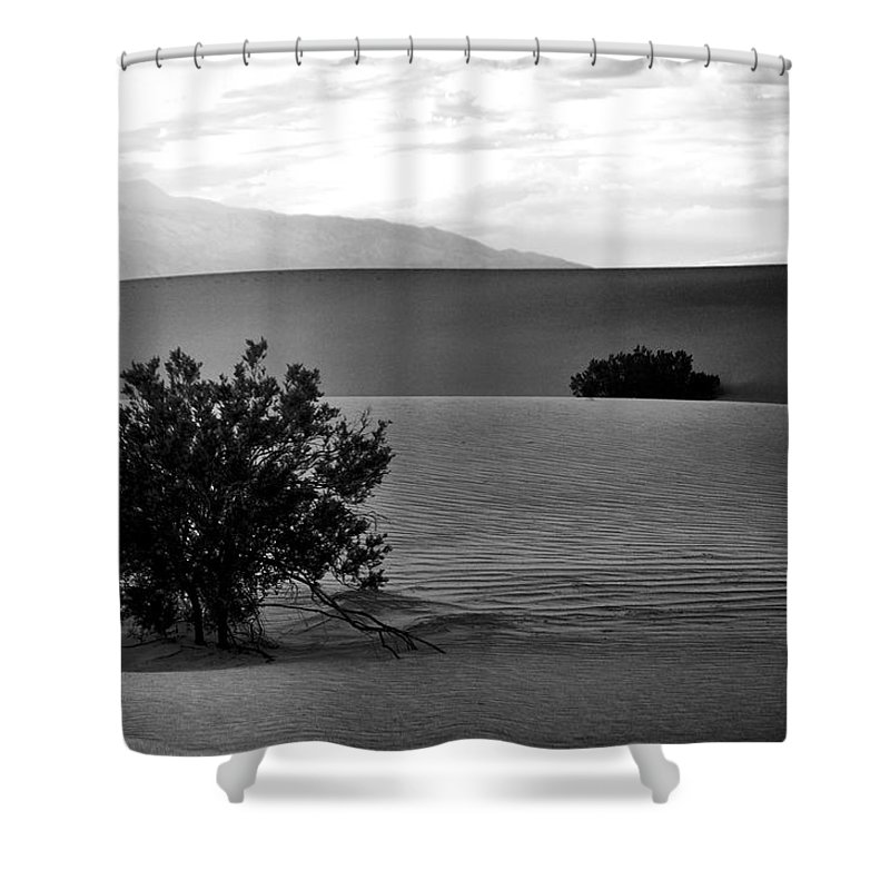 Death Valley Shrubs Shower Curtain featuring the photograph Death Valley Shrubs by Chris Fleming