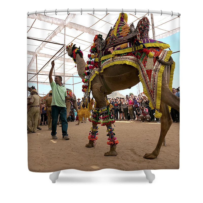 Camel Trader Shower Curtain featuring the photograph Decorated Camel Pushkar by Doug Matthews