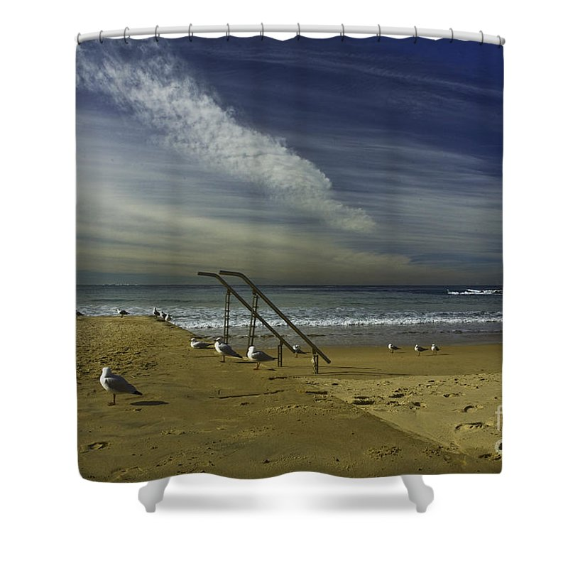 Beach Shower Curtain featuring the photograph Dee Why Beach Sydney by Sheila Smart Fine Art Photography