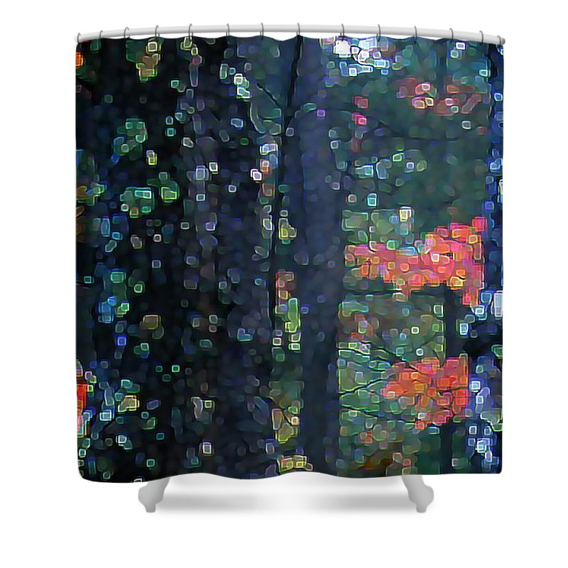 Landscape Shower Curtain featuring the digital art Deep Woods Mystery by Dave Martsolf