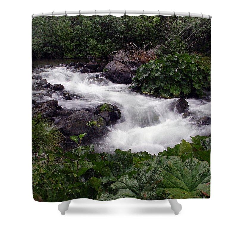 Creek Shower Curtain featuring the photograph Deer Creek 07 by Peter Piatt