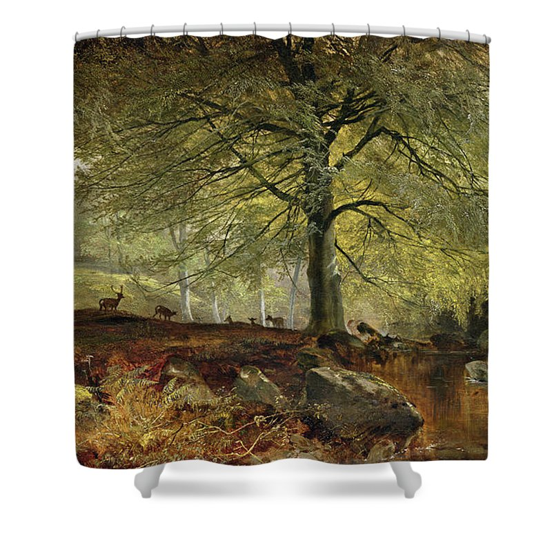 Deer Shower Curtain featuring the painting Deer In A Wood by Joseph Adam