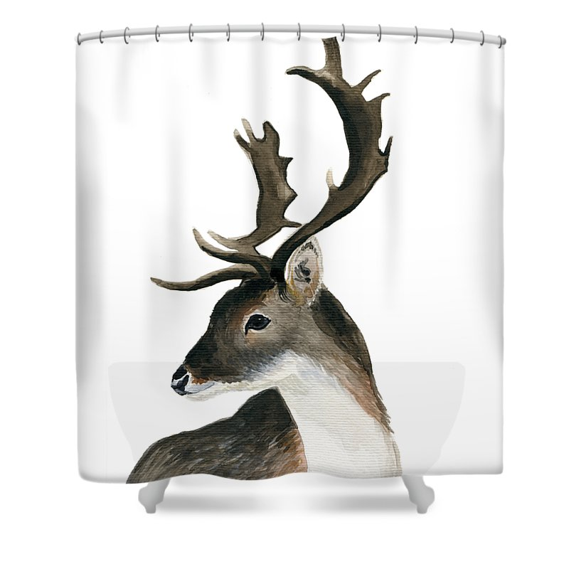 Deer Shower Curtain featuring the painting Deer by Inessa Smakayeva