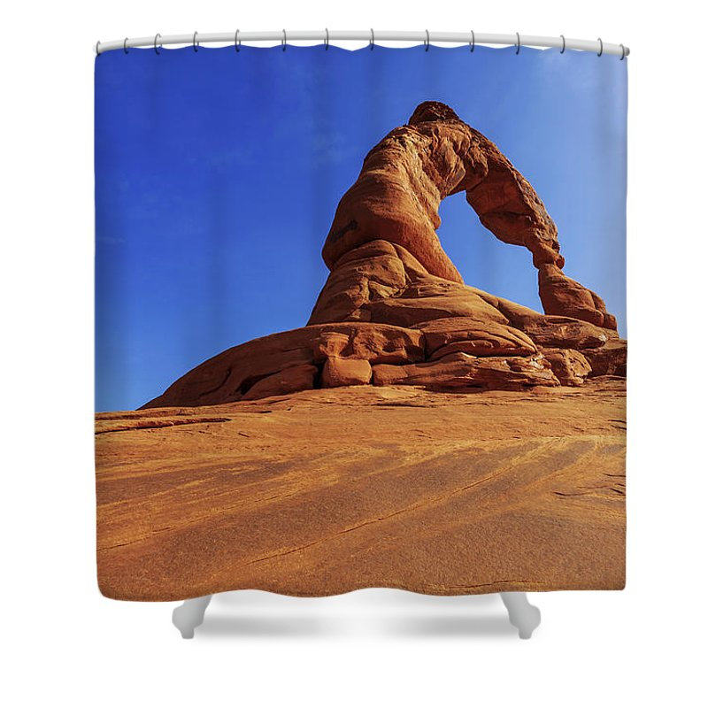 Nature Shower Curtain featuring the photograph Delicate Perspective by Chad Dutson