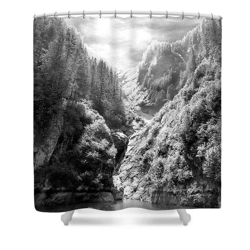 Alaska Shower Curtain featuring the photograph Denali National Park 2 by Dick Goodman