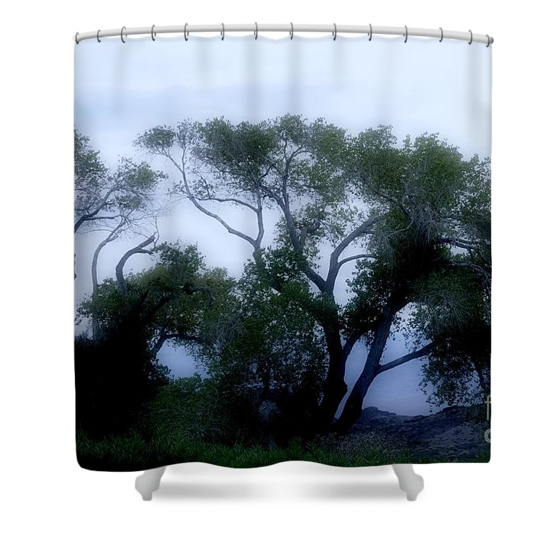Death Shower Curtain featuring the photograph Desert At Night by Kathleen Struckle
