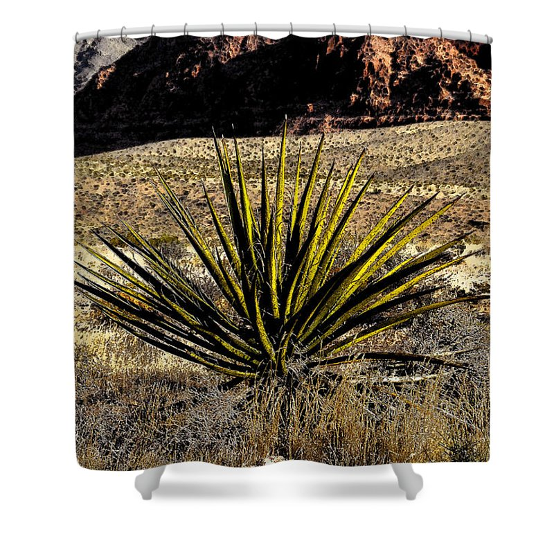 Desert Shower Curtain featuring the painting Desert Cactus by David Lee Thompson