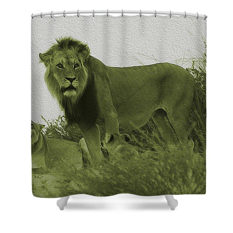 Lion Shower Curtain featuring the photograph Desert Lions by Hennie Van Wyk