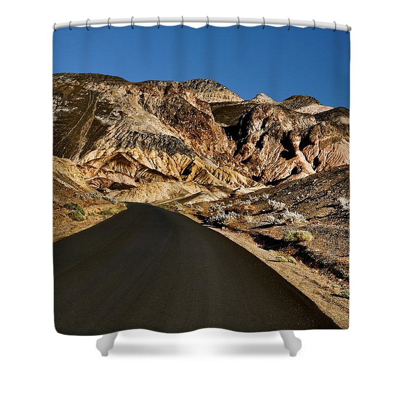 Desert Road Shower Curtain featuring the photograph Desert Road by Chris Fleming