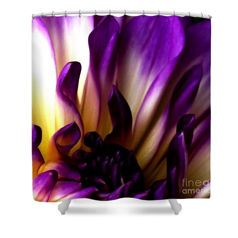 Dahlia Shower Curtain featuring the photograph Desire by Linda Shafer