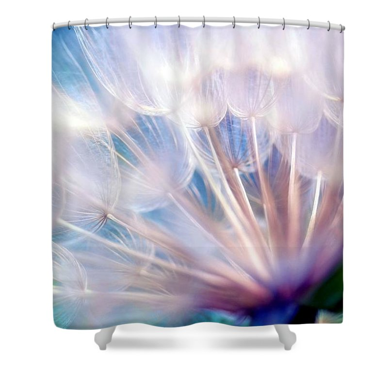 Wispy Shower Curtain featuring the photograph Destiny by Mitch Cat