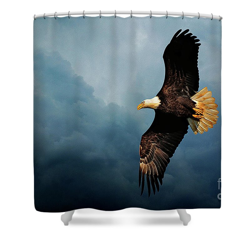 Bird Shower Curtain featuring the photograph Determination by Lois Bryan
