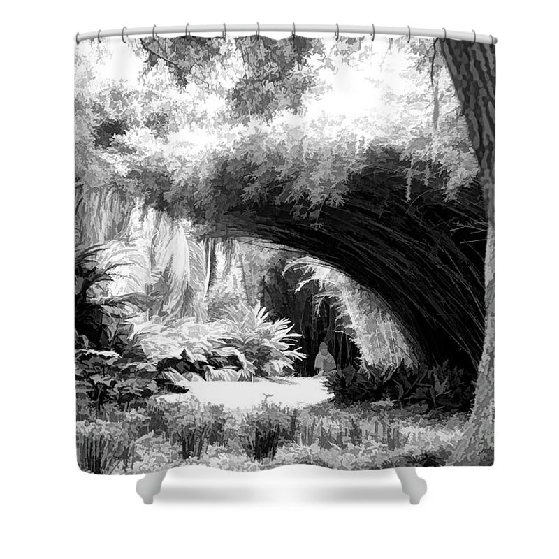 Landscape Shower Curtain featuring the photograph Digital Paint Black White Landscape Louisiana by Chuck Kuhn