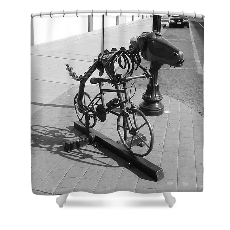 Dinosaur Biking Shower Curtain featuring the photograph Dinosaur Biking Sculpture Grand Junction Co by Tommy Anderson