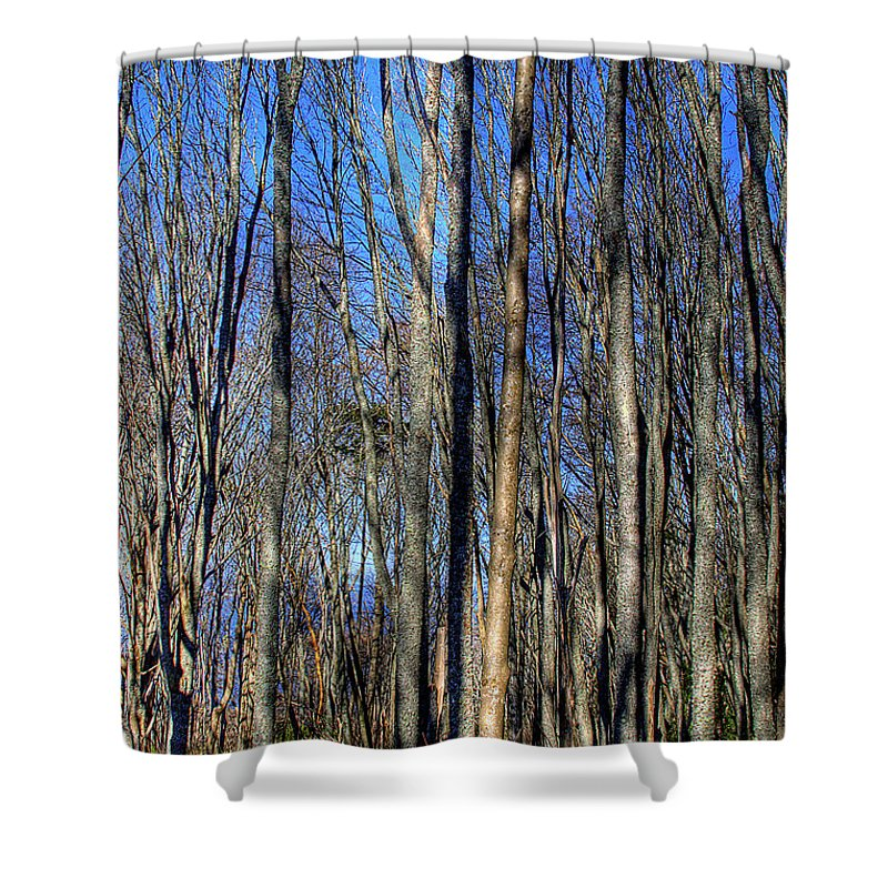 Photo Shower Curtain featuring the photograph Discovery Park No.3 by David Patterson