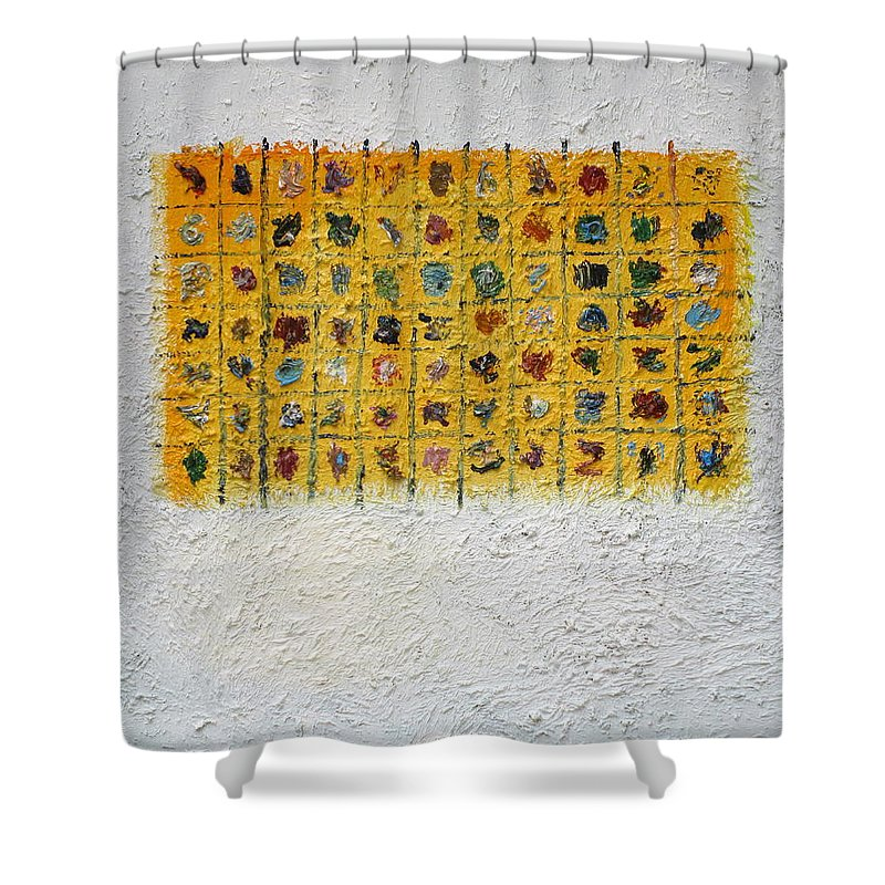Abstract Shower Curtain featuring the painting Display 5 by Fabrizio Cassetta