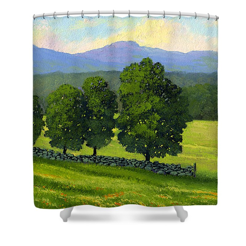 Landscape Shower Curtain featuring the painting Distant Mountains by Frank Wilson