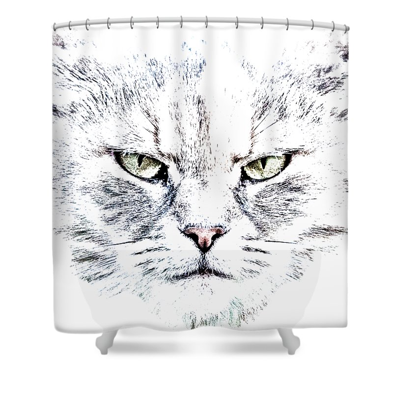Cat Shower Curtain featuring the photograph Disturbed Cat by Everet Regal