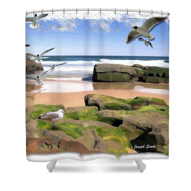 Birdie Shower Curtain featuring the photograph Do-00046 Birdie Beach by Digital Oil