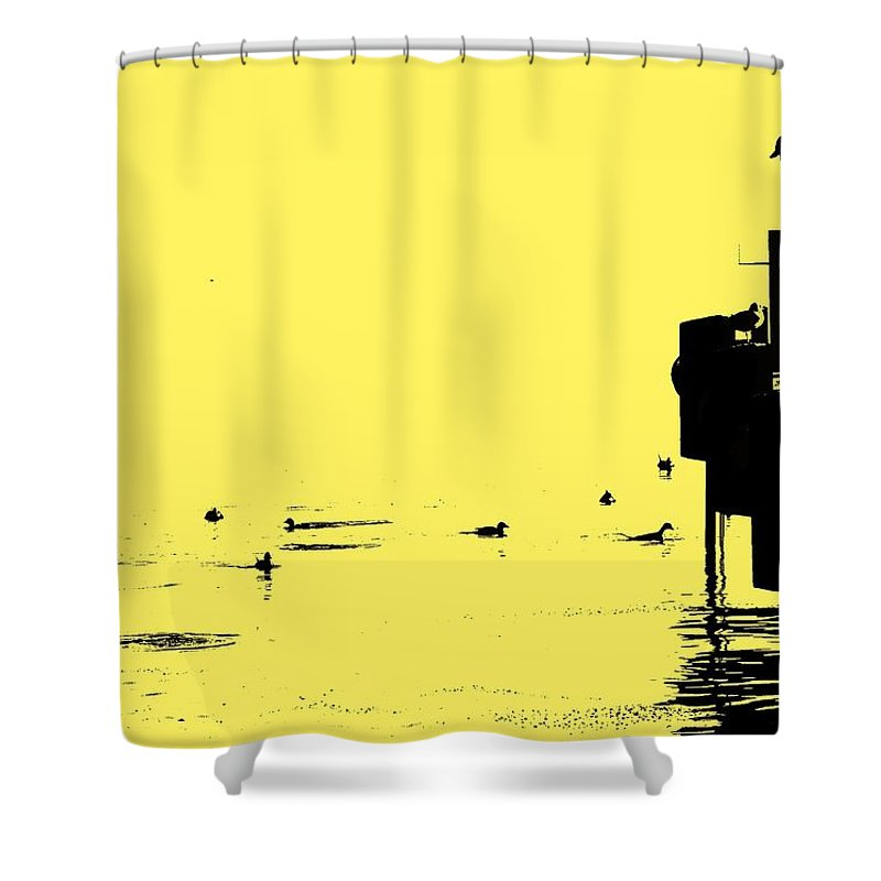 Dock Shower Curtain featuring the photograph Dock And Ducks by Ian MacDonald