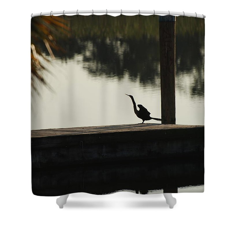 Reflections Shower Curtain featuring the photograph Dock Bird In Color by Rob Hans