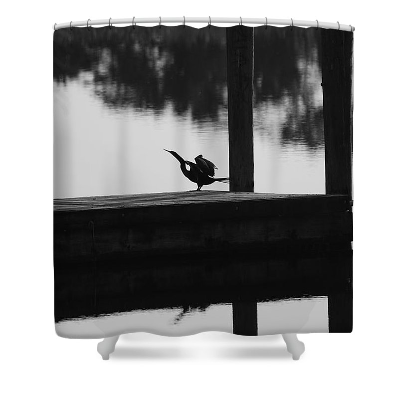 Dock Shower Curtain featuring the photograph Dock Bird by Rob Hans