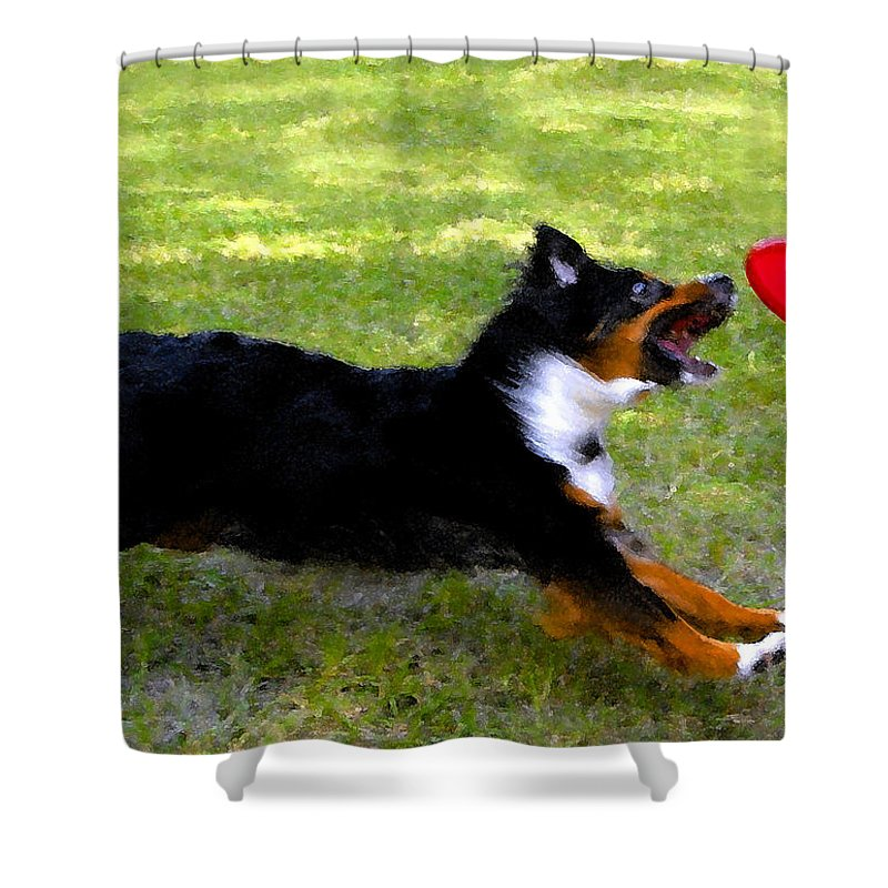 Frisbee Shower Curtain featuring the painting Dog and red frisbee by David Lee Thompson