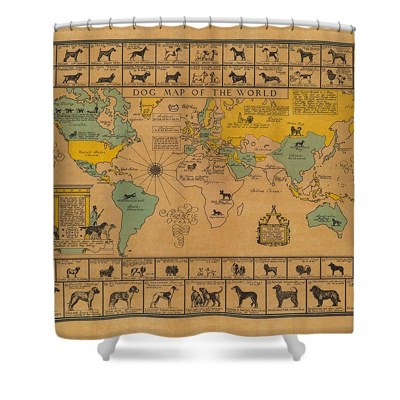 Dog Map Of The World Shower Curtain featuring the drawing Dog Map of the World - Breeds of Dogs from around the World - For Dog Lovers - Antique Chart by Studio Grafiikka