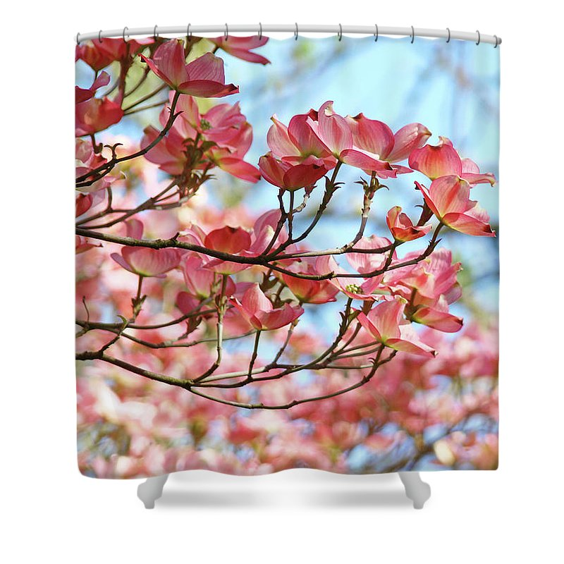 Dogwood Shower Curtain featuring the photograph Dogwood Tree Landscape Pink Dogwood Flowers Art by Baslee Troutman