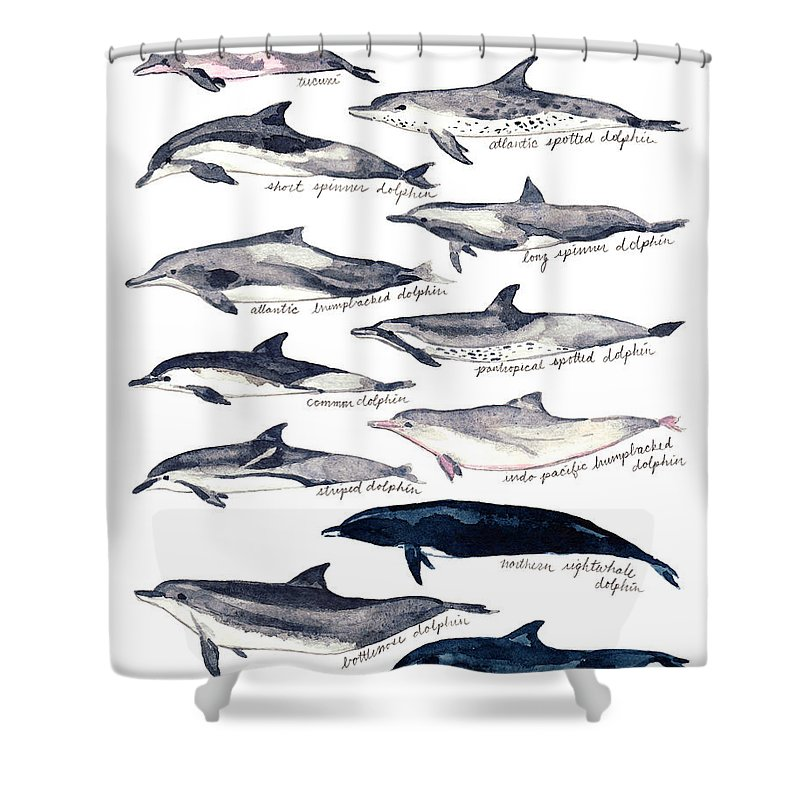 Dolphins Shower Curtain Featuring The Painting Of World Illustrated Chart Nautical Marine Biology Ocean