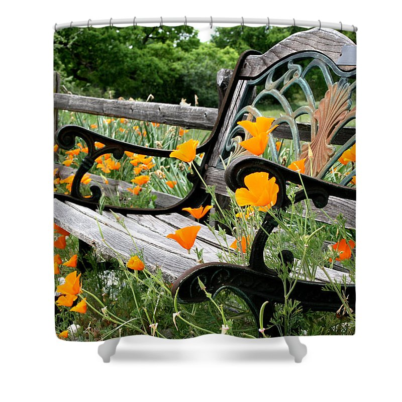 Flowers Shower Curtain featuring the photograph Don't Sit On The Poppies by Sally Bauer