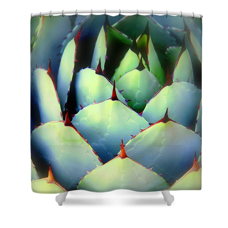 Cactus Shower Curtain featuring the photograph Dont Touch Me by Susanne Van Hulst