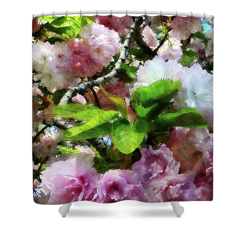 Cherry Blossom Shower Curtain featuring the photograph Double Cherry Blossoms by Susan Savad