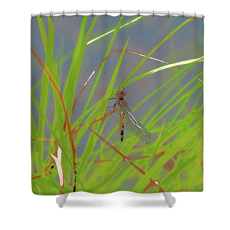 Dragonfly 4 Shower Curtain featuring the digital art Dragonfly 4 by Chris Taggart
